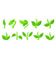 spring green grass sprout plant cartoon icon set vector image vector image
