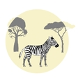 Zebra between savanna trees vector image