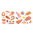 different types of meat products and fish set vector image