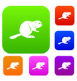 canadian beaver set color collection vector image