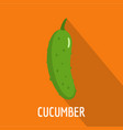 cucumber icon flat style vector image