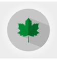 Green maple leaf icon vector image