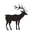medium-sized adult male deer colorless black icon vector image vector image