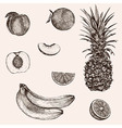 Sketch banana pineapple peach orange Hand drawn vector image vector image
