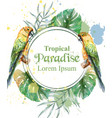tropical paradise frame with watercolor parrots vector image vector image