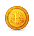 bitcoinbusiness virtual money vector image