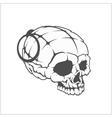 Military skull - grenade in the form of a skull vector image