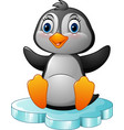 cartoon funny penguin sitting on ice vector image