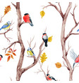 fall trees and birds pattern vector image vector image