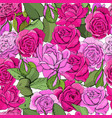 flowers seamless pattern hand drawn vector image