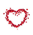 heart shape with rose petals isolated on white vector image