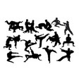 karate fight martial art silhouettes vector image