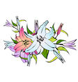 Lily Flower Bouquet vector image vector image