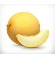 Melon icon vector image