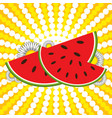red watermelon slices and flowers on a striped vector image vector image