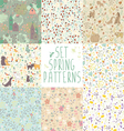 set of spring floral patterns vector image