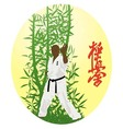 The the man shows karate on a bright background vector image vector image