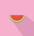 Watermelon Red Fresh Flat Design vector image