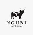 nguni buffalo cow logo icon template vector image vector image