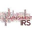 the irs levy and legal powers of garnishment vector image vector image