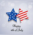 usa independece day vector image