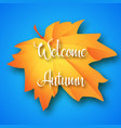 welcome autumn lettering on maple leaf and blue vector image vector image