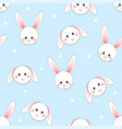 White rabbit on light blue background
