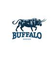 bull logo vector image vector image