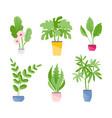 indoor plants set vector image