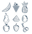 set fresh fruits handmade drawn vector image vector image