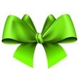 Big green bow vector image