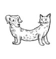 cat dog fake animal engraving vector image