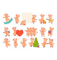 christmas pig large set vector image