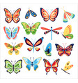 colorful spring butterflies vector image