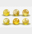 gold glass ball bright round realistic set vector image