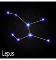 Lepus Constellation with Beautiful Bright Stars on vector image vector image