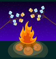 marshmallow on skewers cooked on bonfire at night vector image