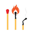 match on fire vector image