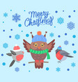 merry christmas with birds vector image vector image