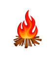 burning bonfire with wood camping fire vector image vector image