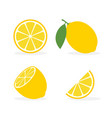 lemon slice citrus fruit flat icon lemon vector image vector image