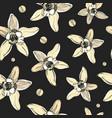 seamless pattern with vaniilla flowersvanilla vector image vector image