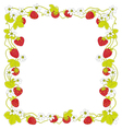 Strawberry square frame vector image vector image