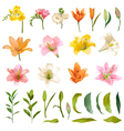 Vintage Lily and Rose Flowers Set Watercolor Style vector image vector image