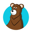 bear brown grizzly avatar icon vector image
