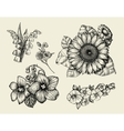 Flowers Hand drawn sketch flower sunflower vector image