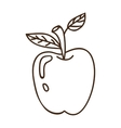 fruit apple icon vector image vector image