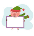 pig hold the board with copy space vector image