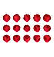 set of red rose petals mesh vector image