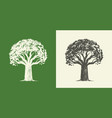 tree oak in vintage engraving style nature symbol vector image vector image